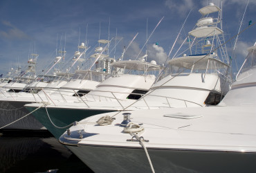 Row of Sport Fishermen